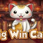 big win cat slot review