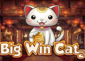 big win cat slot review