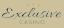Exclusive Casino casino logo