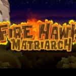 fire hawk matriarch